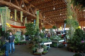 Die Gartenmesse im Freibereich