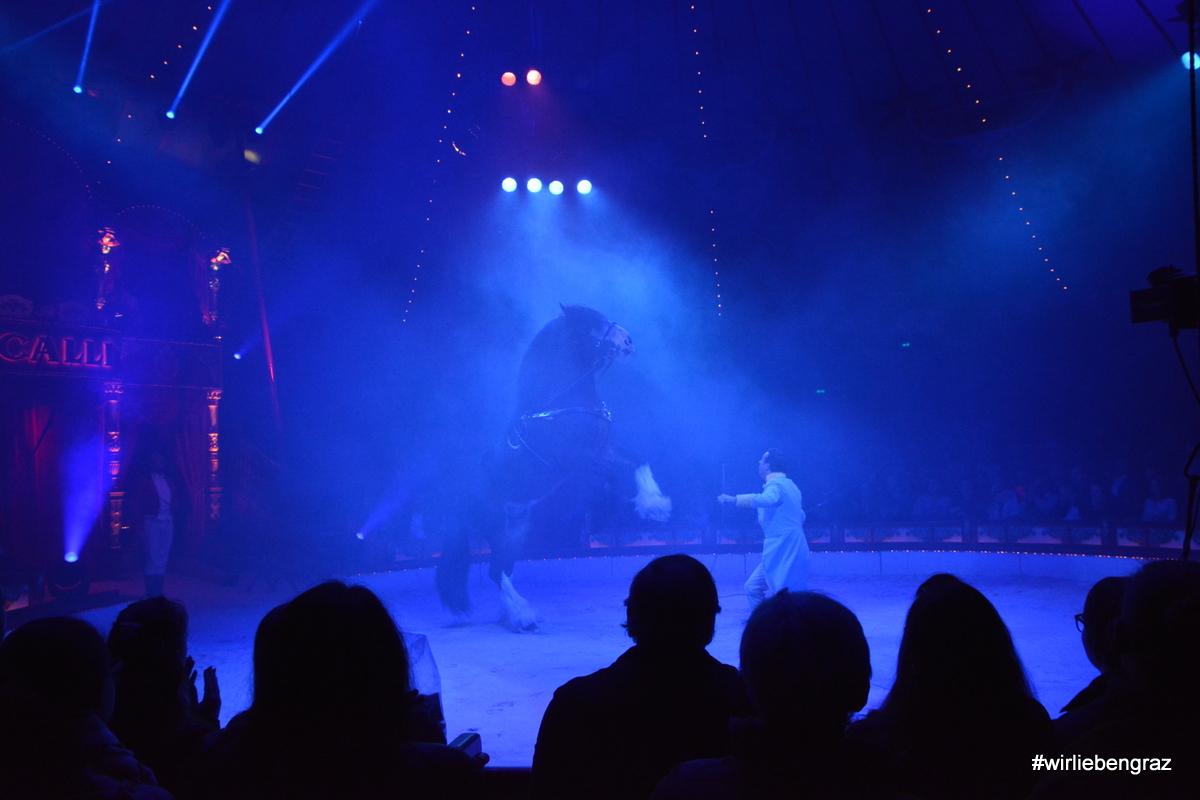 Die einzige Tiernummer: Großes und kleines Pferd soll die Wurzeln des Circus als Pferdeschau betonen